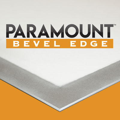 Paramount-Bevel-Edge-Mounting-Board-Silver